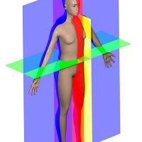 Human_anatomy_planes